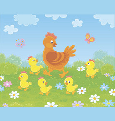 Brown hen and yellow chicks vector