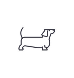 dachshund line icon sign on vector image