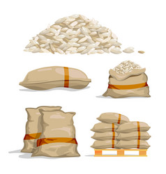 Different sacks of white rice food storage vector