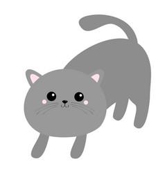 Frightened cat arch back kawaii kitten gray vector