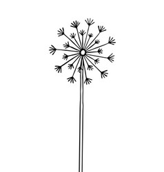 Hand drawn black silhouette dandelion vector