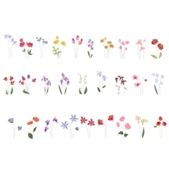 Collection of different stylized flowers on white vector image vector image