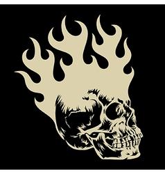 Skull 003 vector image vector image