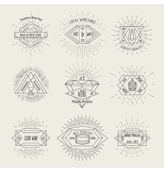 Winemaking and winehouse label or emblem set in vector image