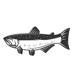salmon fish icon isolated on white background vector image vector image