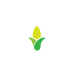 Agriculture grain and wheat logo design template vector