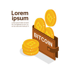 bitcoins wallet over white background with copy vector image