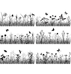 collection plants vector image