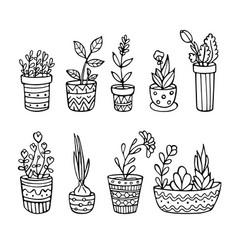 Doodle plants in pots set sketch style vector