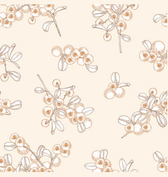 gorgeous seamless pattern with arctic lingonberry vector image