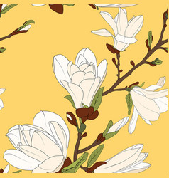 magnolia tree branch flowers bloom blossom buds vector image