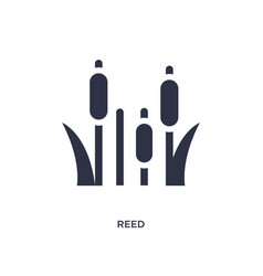 Reed icon on white background simple element from vector