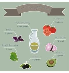 Salad recipe infographics vector
