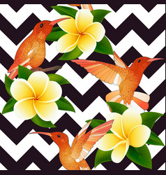 Tropical modern seamless pattern with hummingbirds vector
