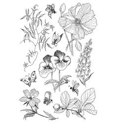vintage botanical blossom flowers set vector image