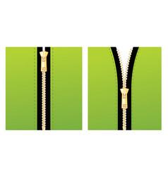zipper green vector image