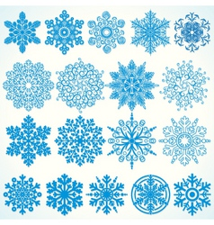 beauty snowflakes vector image vector image