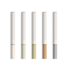 Set of Cigarettes With Colored Filters vector image