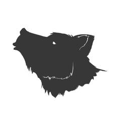 Bear wild animal silhouette predator icon vector