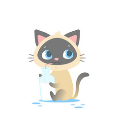 cute baby kitten sitting holding a milk bottle vector image vector image