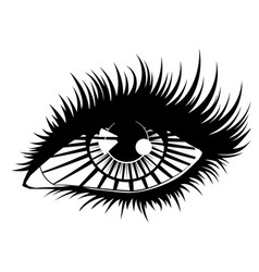 eye with rays vector image