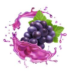red grape juice splash realistic icon vector image
