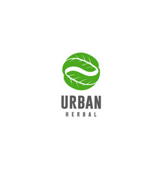 urban herbal vector image