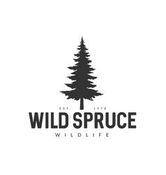 wild spruce logo vector image