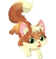 beautiful cat on a white background vector image