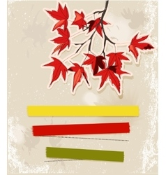 Card with autumn leaves vector image