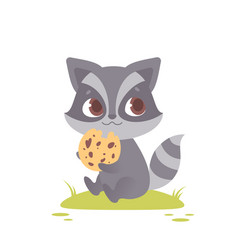 cute baby raccoon sitting eating a cookie vector image
