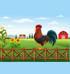 cute cartoon rooster standing in the farm fence vector image