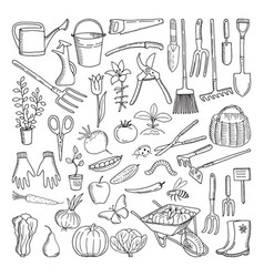 Hand drawn tools for farming and gardening doodle vector