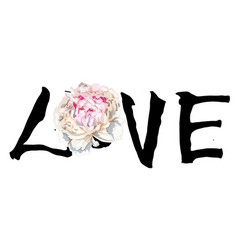 hand written lettering love and beautiful peony vector image