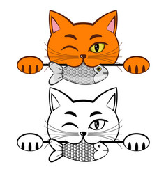 orange cat vector image