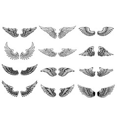 Set of wings isolated on white background design vector