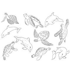Set swimming dophins and turtle with vector