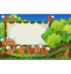 Squirrels and board in the park vector image