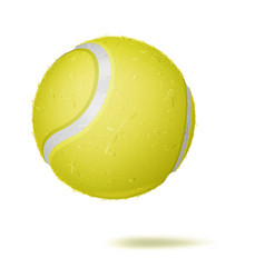 3d tennis ball classic yellow ball vector image