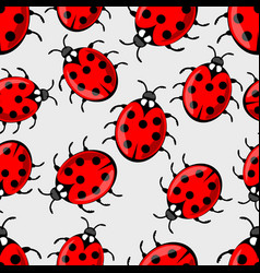 cute ladybug on white background ladybird vector image