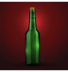 Green beer bottle vector image