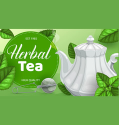 Green or herbal tea leaves with teapot mesh spoon vector