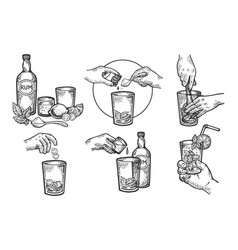 mojito drink creation instructions engraving vector image