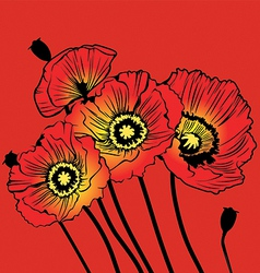 postcard with red poppies on a red background vector image