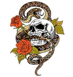 snake skull roses tattoo vector image