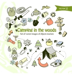 Camping in the woods vector image