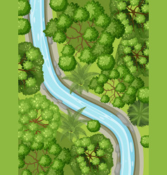 aerial view with river through forest vector image