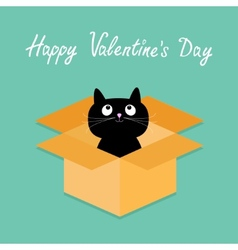 Cat inside opened cardboard package box Happy vector image