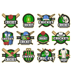 cricket sport game and club icons vector image