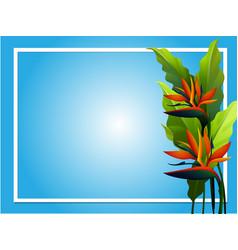 Frame design with bird of paradise flower vector